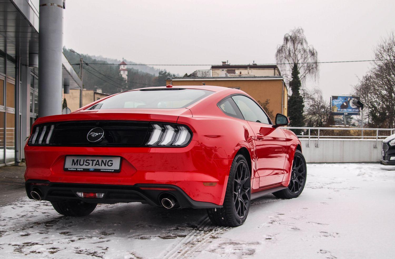 W Euro Car Nowy Mustang Sprzedal Sie W Ciagu 2h Polnocna Tv