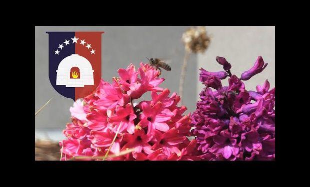 Embedded thumbnail for Życzenia Wielkanocne od Gminy Kolbudy