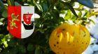 Embedded thumbnail for Powiat Gdański życzy spokojnych Świąt Wielkanocnych